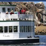 Chablis Cruises