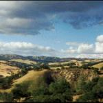 Beautiful Rolling HIlls of Paso Robles